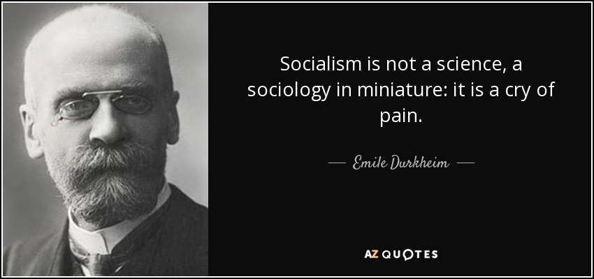 Socialism is not a science, a sociology in miniature: it is a cry of pain. - Emile Durkheim
