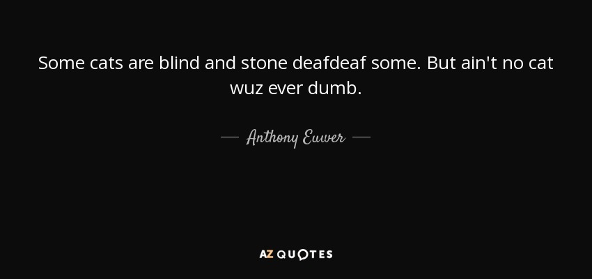 Some cats are blind and stone deafdeaf some. But ain't no cat wuz ever dumb. - Anthony Euwer