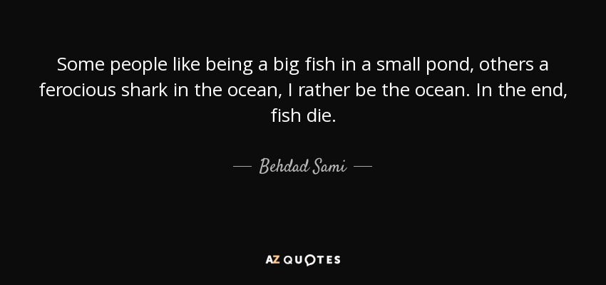 Behdad sami quote some people like being a big fish in a for Big fish in a small pond