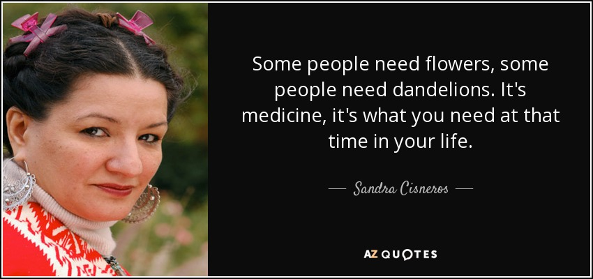 Some people need flowers, some people need dandelions. It's medicine, it's what you need at that time in your life. - Sandra Cisneros
