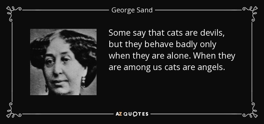 Some say that cats are devils, but they behave badly only when they are alone. When they are among us cats are angels. - George Sand