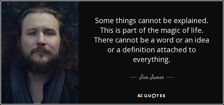 Some things cannot be explained. This is part of the magic of life. There cannot be a word or an idea or a definition attached to everything. - Jim James