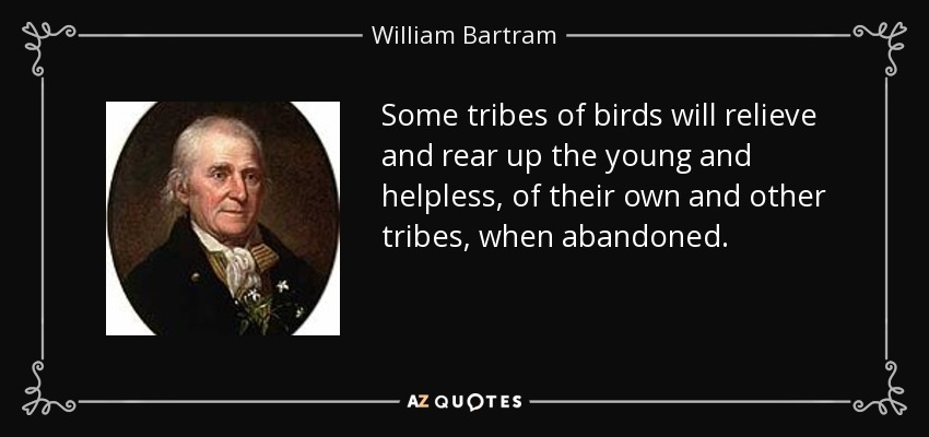 Some tribes of birds will relieve and rear up the young and helpless, of their own and other tribes, when abandoned. - William Bartram
