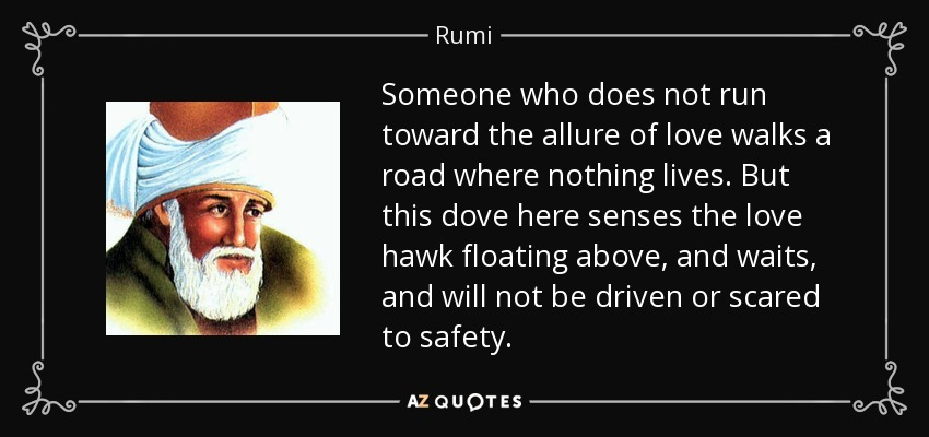 Someone who does not run toward the allure of love walks a road where nothing lives. But this dove here senses the love hawk floating above, and waits, and will not be driven or scared to safety. - Rumi