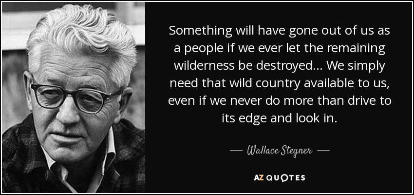 Something will have gone out of us as a people if we ever let the remaining wilderness be destroyed ... We simply need that wild country available to us, even if we never do more than drive to its edge and look in. - Wallace Stegner