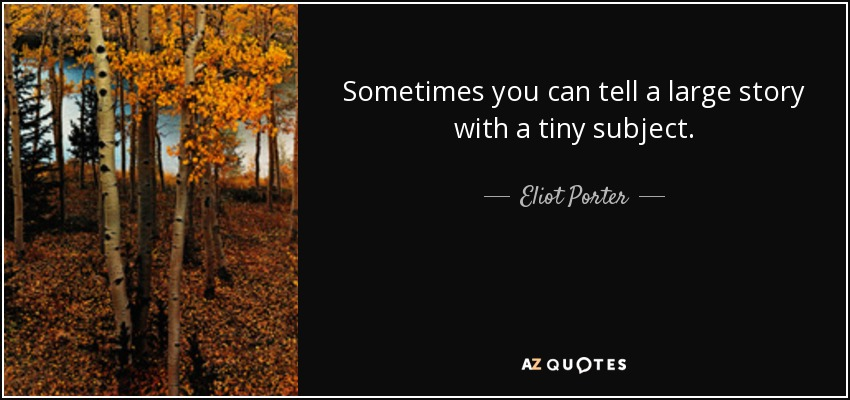 Sometimes you can tell a large story with a tiny subject. - Eliot Porter