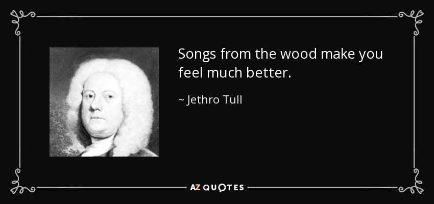 Songs from the wood make you feel much better. - Jethro Tull