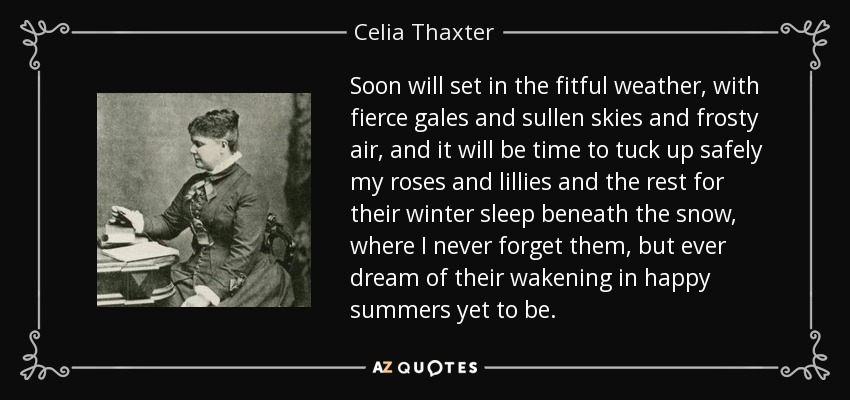Soon will set in the fitful weather, with fierce gales and sullen skies and frosty air, and it will be time to tuck up safely my roses and lillies and the rest for their winter sleep beneath the snow, where I never forget them, but ever dream of their wakening in happy summers yet to be. - Celia Thaxter