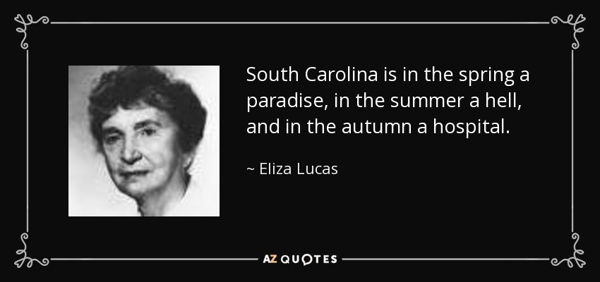 South Carolina is in the spring a paradise, in the summer a hell, and in the autumn a hospital. - Eliza Lucas