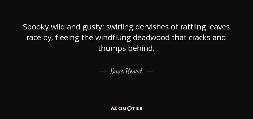 Spooky wild and gusty; swirling dervishes of rattling leaves race by, fleeing the windflung deadwood that cracks and thumps behind. - Dave Beard