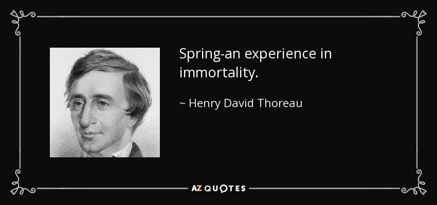 Spring-an experience in immortality. - Henry David Thoreau