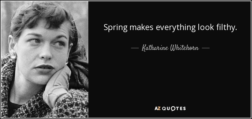 Spring makes everything look filthy. - Katharine Whitehorn
