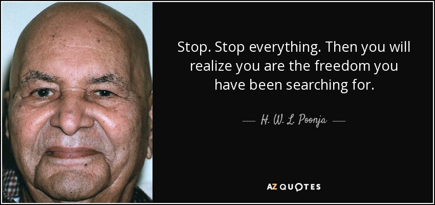 Stop. Stop everything. Then you will realize you are the freedom you have been searching for. - H. W. L. Poonja