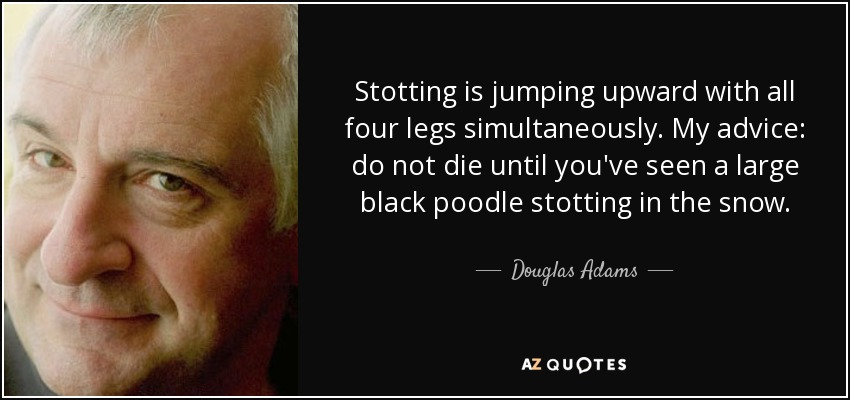 Stotting is jumping upward with all four legs simultaneously. My advice: do not die until you've seen a large black poodle stotting in the snow. - Douglas Adams