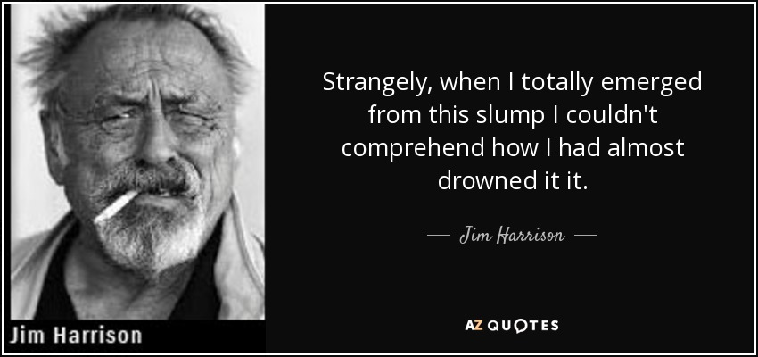 Strangely, when I totally emerged from this slump I couldn't comprehend how I had almost drowned it it. - Jim Harrison