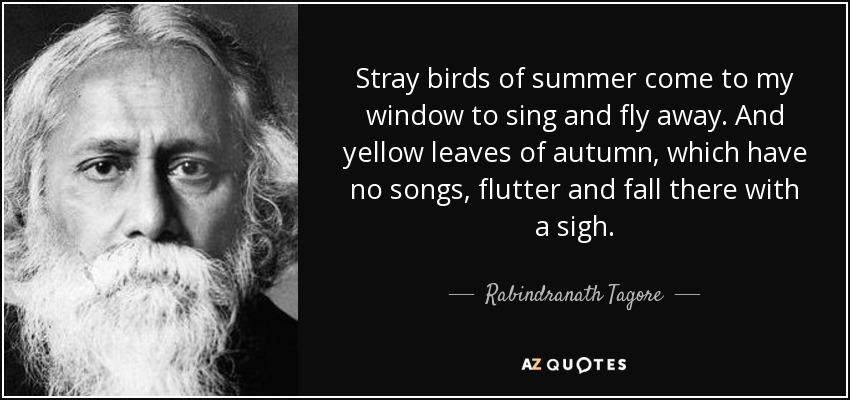 Stray birds of summer come to my window to sing and fly away. And yellow leaves of autumn, which have no songs, flutter and fall there with a sigh. - Rabindranath Tagore