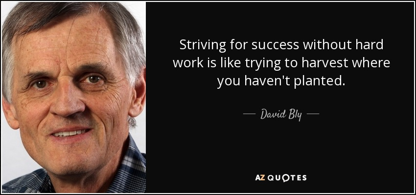 Striving for success without hard work is like trying to harvest where you haven't planted. - David Bly