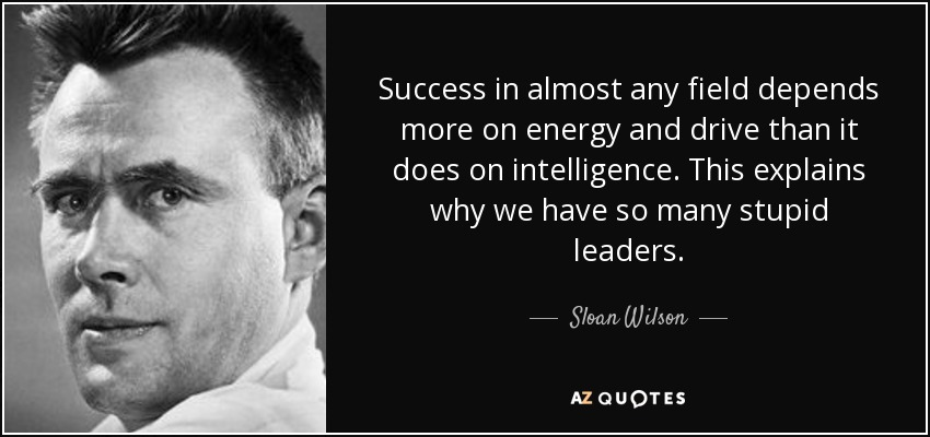 Success in almost any field depends more on energy and drive than it does on intelligence. This explains why we have so many stupid leaders. - Sloan Wilson