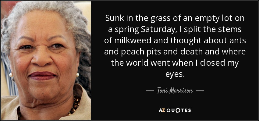 Sunk in the grass of an empty lot on a spring Saturday, I split the stems of milkweed and thought about ants and peach pits and death and where the world went when I closed my eyes. - Toni Morrison