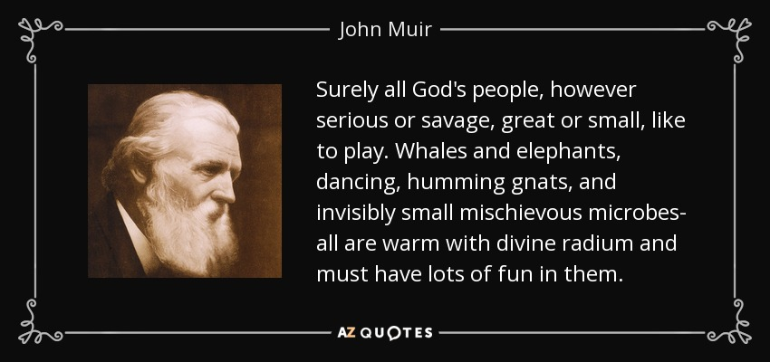 Surely all God's people, however serious or savage, great or small, like to play. Whales and elephants, dancing, humming gnats, and invisibly small mischievous microbes- all are warm with divine radium and must have lots of fun in them. - John Muir