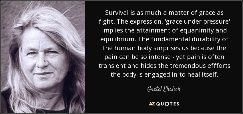 Survival is as much a matter of grace as fight. The expression, 'grace under pressure' implies the attainment of equanimity and equilibrium. The fundamental durability of the human body surprises us because the pain can be so intense - yet pain is often transient and hides the tremendous effforts the body is engaged in to heal itself. - Gretel Ehrlich