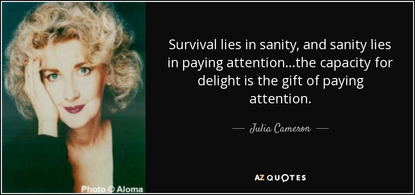 Survival lies in sanity, and sanity lies in paying attention...the capacity for delight is the gift of paying attention. - Julia Cameron