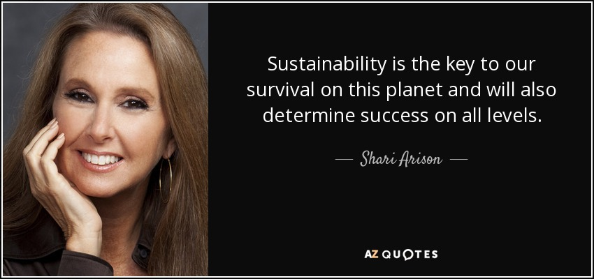 Sustainability is the key to our survival on this planet and will also determine success on all levels. - Shari Arison