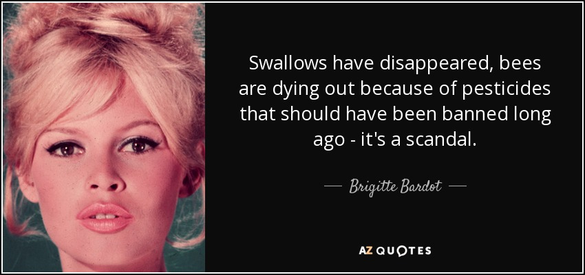 Swallows have disappeared, bees are dying out because of pesticides that should have been banned long ago - it's a scandal. - Brigitte Bardot