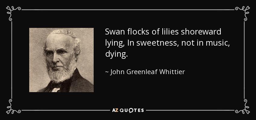 Swan flocks of lilies shoreward lying, In sweetness, not in music, dying. - John Greenleaf Whittier
