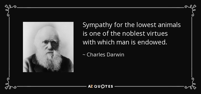 Sympathy for the lowest animals is one of the noblest virtues with which man is endowed. - Charles Darwin