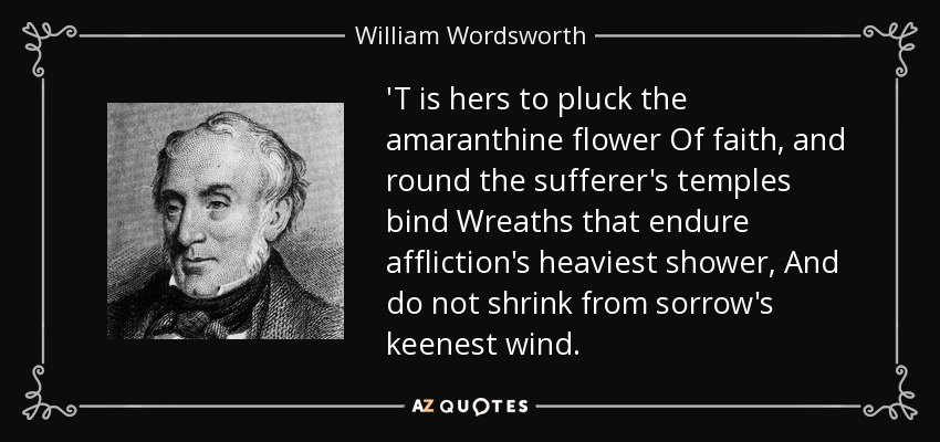 william wordsworths nutting essay William wordsworth (7 april 1770 – 23 april 1850) was a major english romantic poet who  nutting the ruined cottage michael the kitten at play.