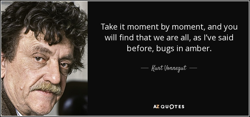 Take it moment by moment, and you will find that we are all, as I've said before, bugs in amber. - Kurt Vonnegut