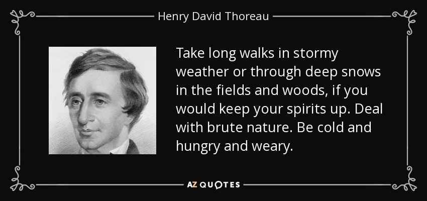 Take long walks in stormy weather or through deep snows in the fields and woods, if you would keep your spirits up. Deal with brute nature. Be cold and hungry and weary. - Henry David Thoreau