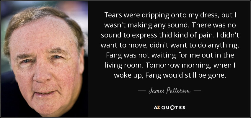 Tears were dripping onto my dress, but I wasn't making any sound. There was no sound to express thid kind of pain. I didn't want to move, didn't want to do anything. Fang was not waiting for me out in the living room. Tomorrow morning, when I woke up, Fang would still be gone. - James Patterson