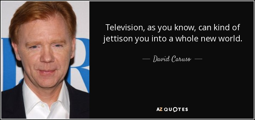 Television, as you know, can kind of jettison you into a whole new world. - David Caruso
