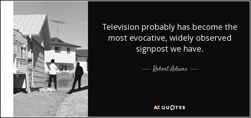 Television probably has become the most evocative, widely observed signpost we have. - Robert Adams