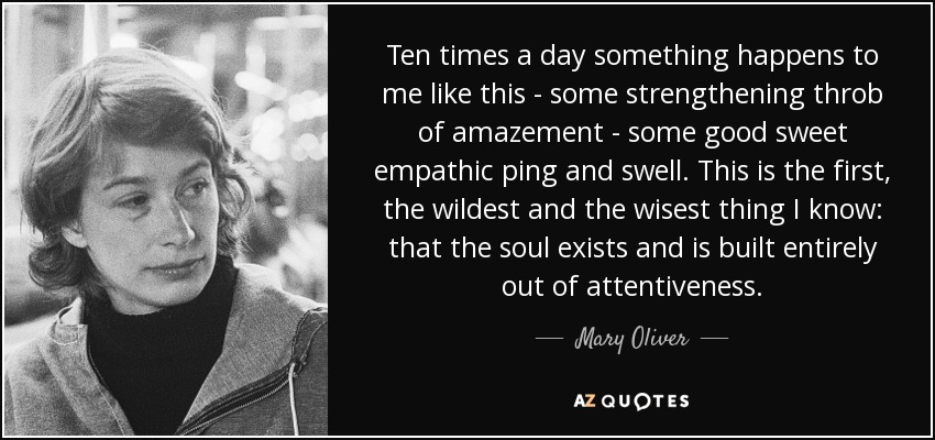 Ten times a day something happens to me like this - some strengthening throb of amazement - some good sweet empathic ping and swell. This is the first, the wildest and the wisest thing I know: that the soul exists and is built entirely out of attentiveness. - Mary Oliver