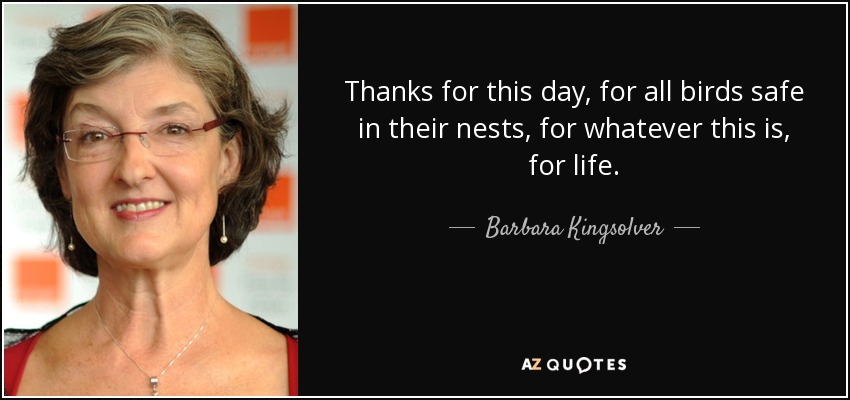 Thanks for this day, for all birds safe in their nests, for whatever this is, for life. - Barbara Kingsolver