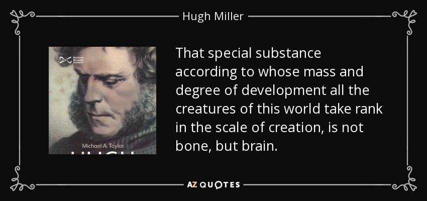 That special substance according to whose mass and degree of development all the creatures of this world take rank in the scale of creation, is not bone, but brain. - Hugh Miller