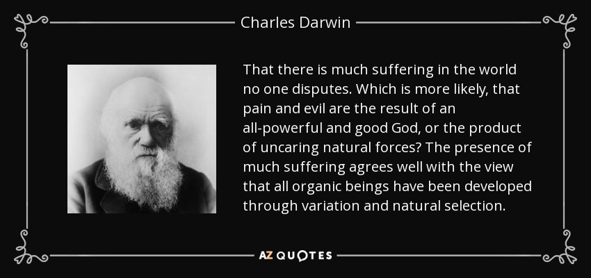 That there is much suffering in the world no one disputes. Which is more likely, that pain and evil are the result of an all-powerful and good God, or the product of uncaring natural forces? The presence of much suffering agrees well with the view that all organic beings have been developed through variation and natural selection. - Charles Darwin
