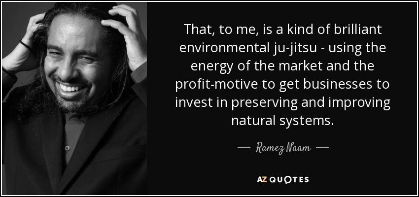 That, to me, is a kind of brilliant environmental ju-jitsu - using the energy of the market and the profit-motive to get businesses to invest in preserving and improving natural systems. - Ramez Naam