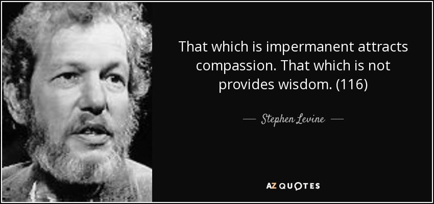 That which is impermanent attracts compassion. That which is not provides wisdom. (116) - Stephen Levine