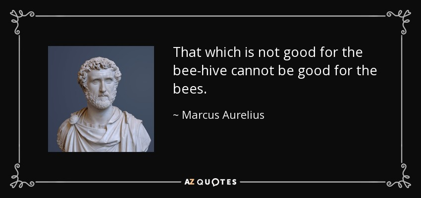 That which is not good for the bee-hive cannot be good for the bees. - Marcus Aurelius