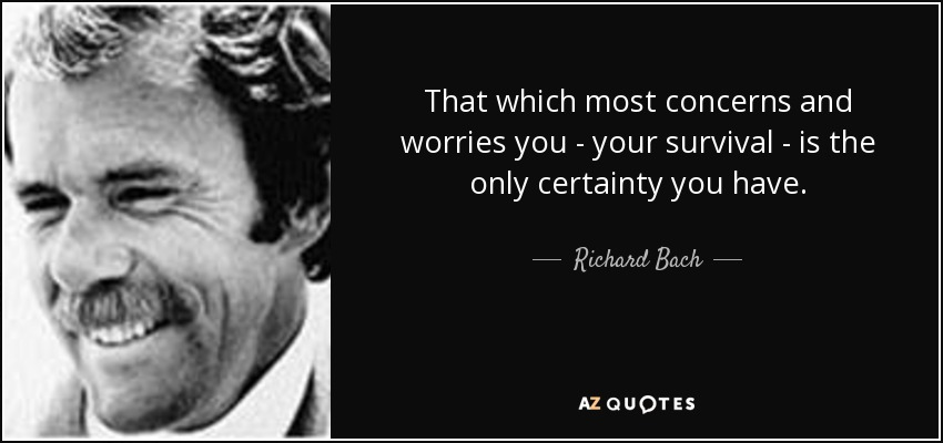 That which most concerns and worries you - your survival - is the only certainty you have. - Richard Bach