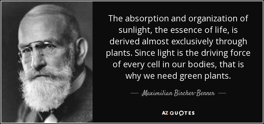 The absorption and organization of sunlight, the essence of life, is derived almost exclusively through plants. Since light is the driving force of every cell in our bodies, that is why we need green plants. - Maximilian Bircher-Benner