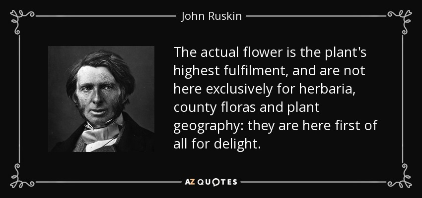 The actual flower is the plant's highest fulfilment, and are not here exclusively for herbaria, county floras and plant geography: they are here first of all for delight. - John Ruskin