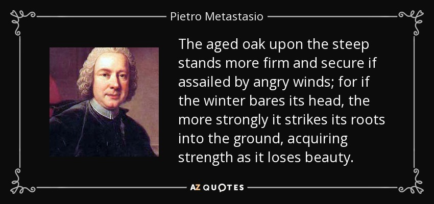 The aged oak upon the steep stands more firm and secure if assailed by angry winds; for if the winter bares its head, the more strongly it strikes its roots into the ground, acquiring strength as it loses beauty. - Pietro Metastasio