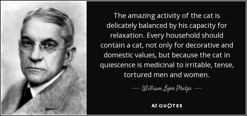 The amazing activity of the cat is delicately balanced by his capacity for relaxation. Every household should contain a cat, not only for decorative and domestic values, but because the cat in quiescence is medicinal to irritable, tense, tortured men and women. - William Lyon Phelps