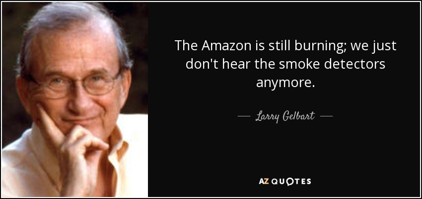 The Amazon is still burning; we just don't hear the smoke detectors anymore. - Larry Gelbart