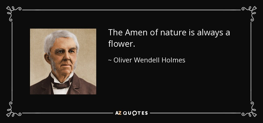The Amen of nature is always a flower. - Oliver Wendell Holmes Sr.